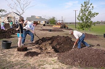 Two people dig a hole to plant a tree, while third person stands holding the tree.