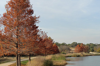 Trees with fall colors lining the San Gabriel River in Georgetown, TX