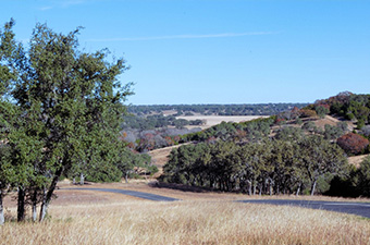 Roadway with hills and trees in the background at Garey Park in Georgetown, tX